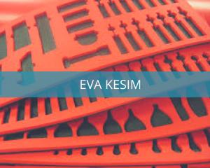 eva_kesim